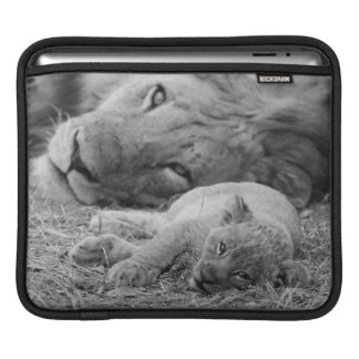 Cute Lion Cub Resting With Father Sleeves For iPads