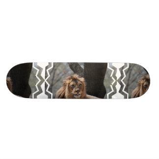 Cute Lion Skateboard Deck