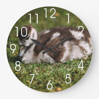 Cute Little Baby Goose, Gosling In Grass Large Clock