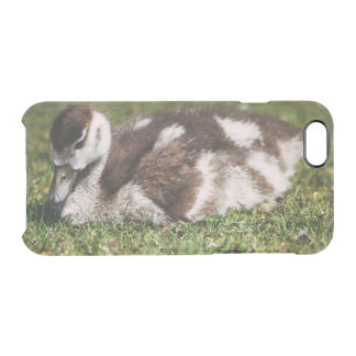 Cute Little Baby Goose, Gosling In Grass Uncommon Clearly™ Deflector iPhone 6 Case