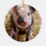 Cute little Baby Piglet Christmas Tree Ornament