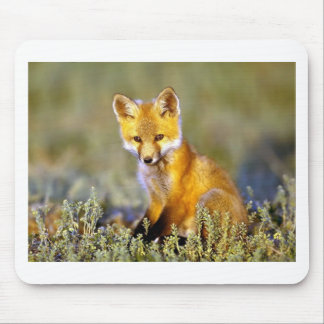 cute little baby red fox mouse pad
