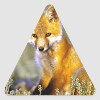 cute little baby red fox triangle sticker