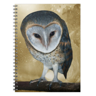 Cute little Barn Owl fantasy Note Books