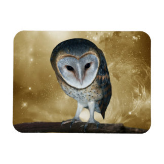 Cute little Barn Owl fantasy Rectangle Magnets