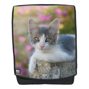 Cute Little Bicolor Kitten Fluffy Photo Cat Lovers Backpack 3ac4687c8346b