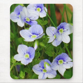Cute, little blue flowers mouse pad