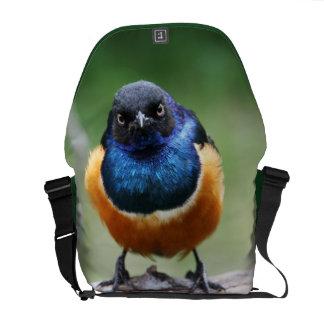 Cute Little Bluebird Photo Wildlife Photography Courier Bag