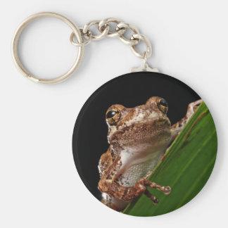 Cute Little Brown Frog Keychain