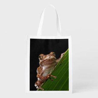 Cute Little Brown Frog Market Totes