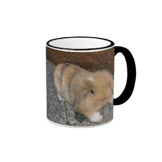 Cute little brown lop ringer coffee mug
