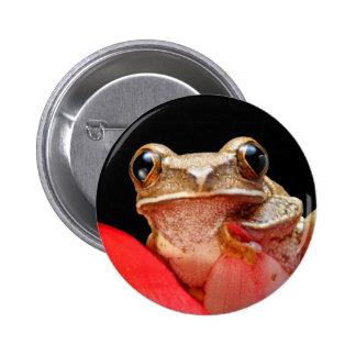 Cute Little Brown Marbled Reed Frog Black Pinback Button