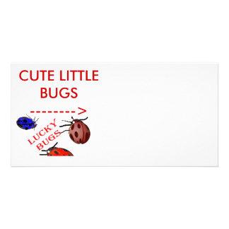 CUTE LITTLE BUGS PHOTO CARD