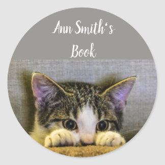 Cute Little Cat Book Plate to Customize