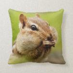 Cute Little Cheeky Chipmunk Pillows