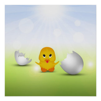 Cute Little Chick - Poster Print