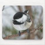 Cute Little Chickadee Mouse Pad
