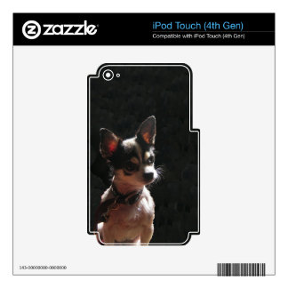 Cute Little Chihuahua Dog iPod Touch 4G Skins