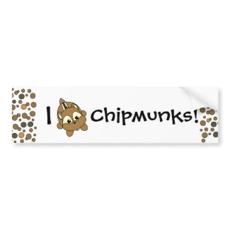 Cute Little Chipmunk Critter bumpersticker
