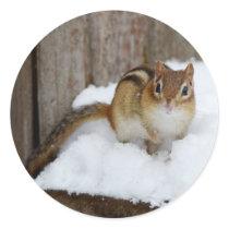 Cute Little Chipmunk in the Snow Classic Round Sticker