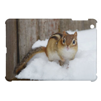 Cute Little Chipmunk on a Snowy Step Case For The iPad Mini