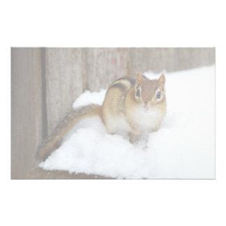 Cute Little Chipmunk on a Snowy Step Stationery