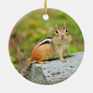 Cute Little Chipmunk Posing on a Rock Double-Sided Ceramic Round Christmas Ornament