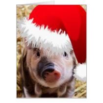 Cute Little Christmas Piglet Card