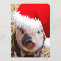 Cute Little Christmas Piglet Holiday Card