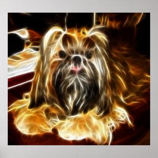 Cute Little Dog Poster