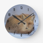 Cute Little Fox Curled Up Winter Photo Round Clock