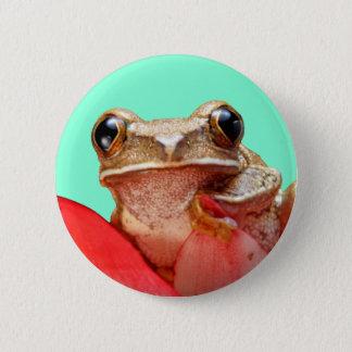 Cute Little Frog Buttons Aquamarine