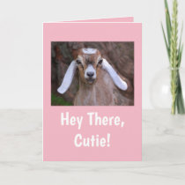 Cute Little Goat Birthday Card