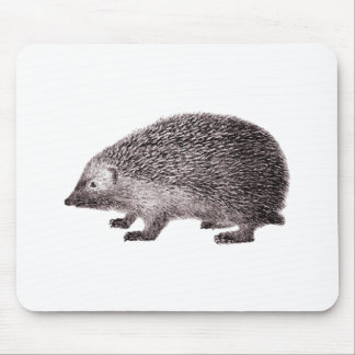 Cute Little Hedgehog Mouse Pad