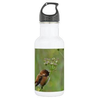 Cute little Hummingbird 18oz Water Bottle