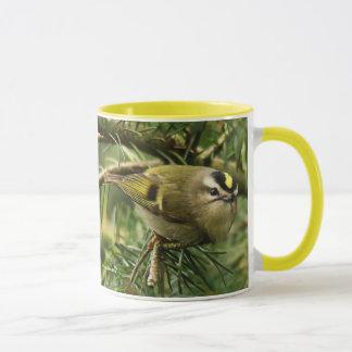 Cute Little Kinglet Causes a Stir in the Fir Mug