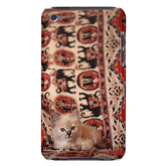 Cute Little Kitten Barely There iPod Cases