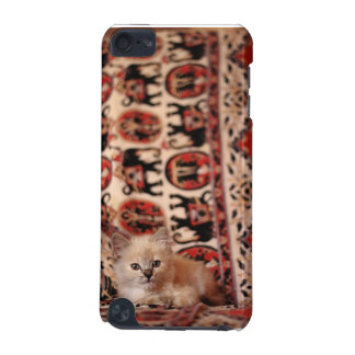 Cute Little Kitten iPod Touch (5th Generation) Cover