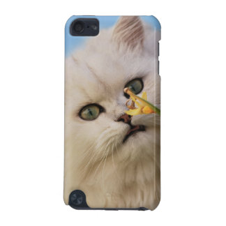 Cute little Kitten iPod Touch 5G Cases