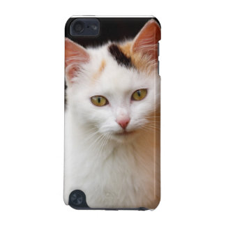 Cute Little Kitten iPod Touch (5th Generation) Covers