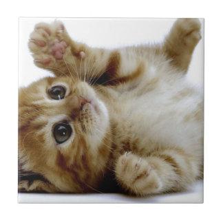 cute little kitten cat pet ginger tabby ceramic tile