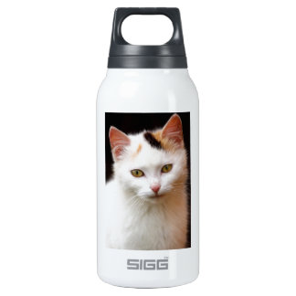 Cute Little Kitten Insulated Water Bottle