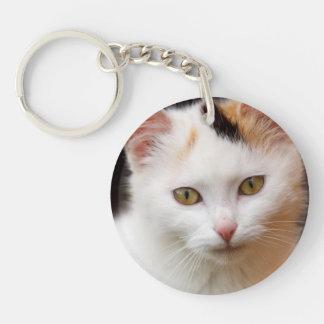 Cute Little Kitten Keychain