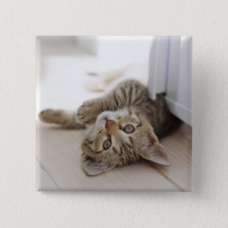 Cute Little Kitten Pinback Button