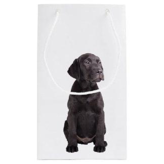 cute little labrador retriever puppy small gift bag