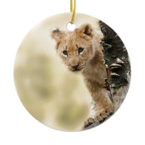 CUTE LITTLE LION CUB RANGE CERAMIC ORNAMENT