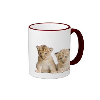 Cute Little Lion Cubs Ringer Coffee Mug