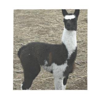 Cute little Llama dude Notepad