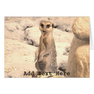 Cute Little Meerkat on Guard Card