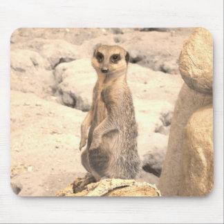 Cute Little Meerkat on Guard Mouse Pad